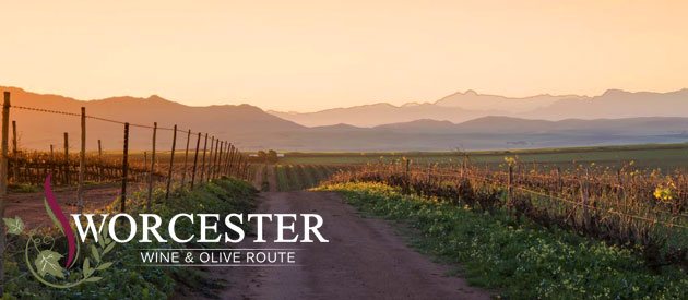 WORCESTER WINE & OLIVE ROUTE