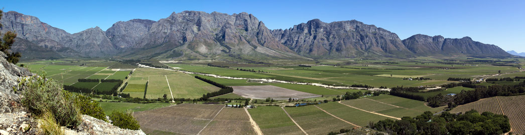 Wine Farms - South Africa